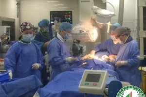 重庆西南医院整形科医生有哪些?实力医生介绍